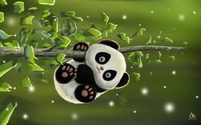 Картинка игра, малыш, арт, панда, деская, Amol Shede, Cute Panda