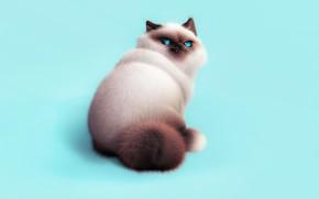 Картинка кот, характер, настроение, арт, пушистик, Oksana Cherry, Meow)