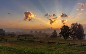 Картинка поле, лето, небо, трава, облака, свет, деревья, пейзаж, природа, туман, рассвет, забор, тишина, даль, утро, …