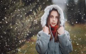 Картинка снег, портрет, капюшон, девочка, мех, Giorgi Solomnishvili