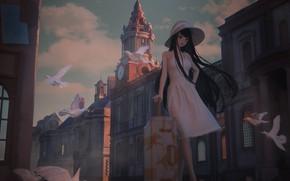 Картинка девушка, птицы, город, голуби, чемодан