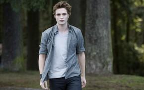 Картинка рубашка, Сумерки, Эдвард Каллен, The Twilight