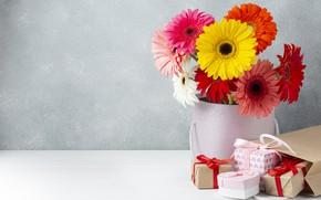 Картинка цветы, подарок, букет, герберы, коробочка