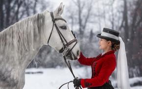 Картинка зима, девушка, животное, конь, Юлия Бусыгина