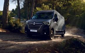 Картинка лес, Renault, фургон, Master, 2019, труповозка