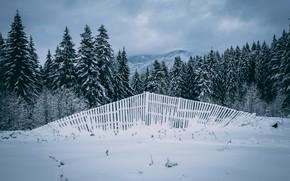 Картинка зима, поле, лес, небо, облака, снег, горы, забор, ели, ограждение, сугробы, ёлочки, заснеженные, поваленный