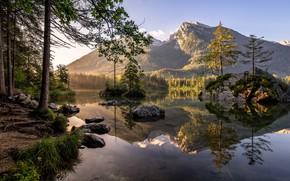Картинка лес, лето, горы, озеро, утро