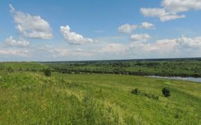 Картинка лето, Пейзаж, зелнь