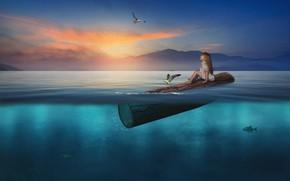 Картинка вода, рыбы, закат, птицы, чайки, ситуация, девочка, бревно