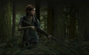 Обои Naughty Dog, Game, The Last of Us Part II