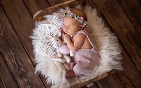 Картинка игрушка, доски, сон, кролик, девочка, венок, младенец, кроватка, спящая