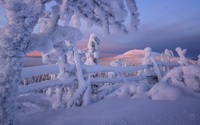 Картинка зима, снег, деревья, забор, сугробы, Финляндия, Лапландия