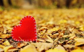 Картинка осень, листья, любовь, парк, сердце, желтые, love, heart, yellow, park, autumn, leaves, romantic