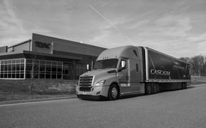 Картинка Freightliner, седельный тягач, трёхосный, полуприцеп, капотный, Cascadia