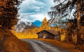 Картинка дорога, осень, горы