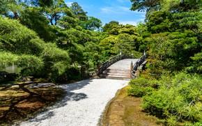 Картинка Природа, Мост, Япония, Парк, Дорожка, Киото