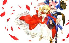 Картинка девушки, сейбер, Fate / Grand Order, Судьба великая кампания