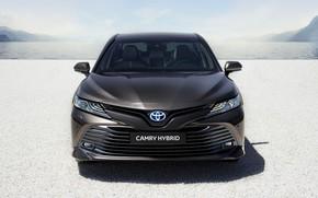 Картинка Toyota, седан, вид спереди, Hybrid, Camry, 2019
