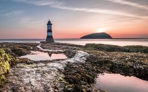 Картинка море, побережье, маяк, Уэльс, Англси