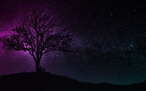 Картинка dark, wallpaper, black, art, tree, man, hill, purple, silhouette, starry sky, miscellaneous, 4k uhd background