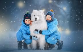 Картинка зима, снег, дети, животное, собака, пёс, самоед, Ксения Лысенкова
