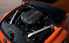 Картинка двигатель, KIA, Kia, GTS, Stinger, 2020, KIΛ