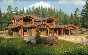 Картинка лес, цветы, архитектура, телега, Медвежий угол