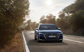Картинка деревья, синий, Audi, седан, обочина, Audi A8, Audi S8, 2020, 2019, V8 Biturbo
