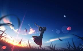 Картинка девушка, закат, труба