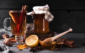 Картинка лимон, чай, мед, банка, орехи, корица