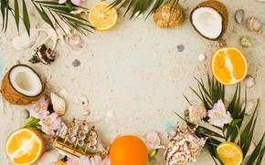 Картинка песок, лето, кокос, ракушки, summer, beach, flowers, sand, fruit, orange, coconut, vacation, seashells