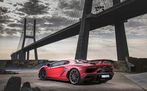 Обои мост, Lamborghini, суперкар, 2018, Aventador, SVJ, Aventador SVJ