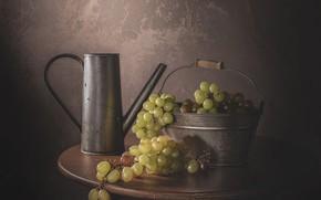Картинка зеленый, темный фон, стол, стена, круглый, еда, виноград, ведро, посуда, лейка, натюрморт, металлическая, гроздья, композиция, …