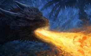 Картинка огонь, дракон, фэнтези, арт, Fantasy, art