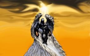 Картинка крылья, ангел, спаун, wings, suit, spawn, angelspawn