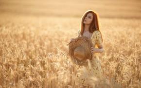 Картинка пшеница, Девушка, шляпа, платье, рыжая, Сергей Сорокин, Дарья Костина