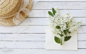Картинка цветы, шляпа, white, белые, wood, blossom, flowers, spring