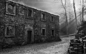 Картинка деревья, black & white, здание, черно-белое, руины, архитектура, монохром