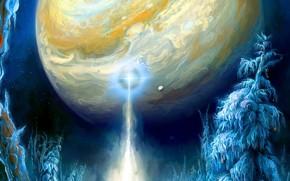 Картинка снег, ночь, природа, сосны, фантастический мир, nature, night, snow, зимний лес, pine trees, beam of …