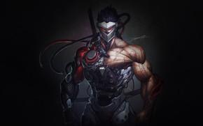 Картинка Blizzard, Art, Illustration, Minimalism, Overwatch, Character, Game Art, Genji, Гэндзи, HeeWonLee, by HeeWonLee, Genji Blackwatch