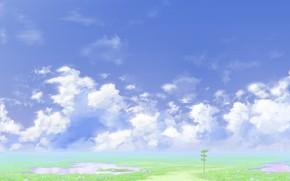 Картинка дорога, лето, небо, указатель