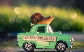 Картинка дорога, машина, макро, свет, сияние, настроение, надпись, табличка, улитка, автомобиль, машинка, зеленый фон, игрушечная, боке