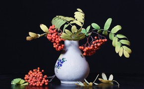 Картинка осень, листья, ветки, ягоды, темный фон, букет, плоды, красные, ваза, черный фон, рябина, композиция, осенний