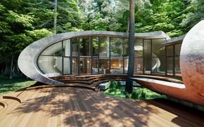 Картинка лес, дизайн, тень, архитектура, строение