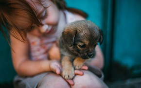 Картинка малыш, девочка, щенок, друзья, пёсик, Дарья Шевченко