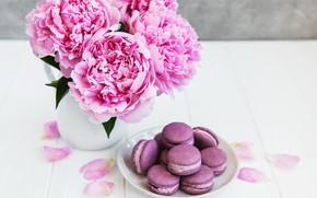 Картинка цветы, розовые, wood, pink, flowers, пионы, peonies, macaron, макаруны