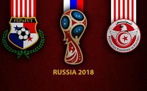 Картинка wallpaper, sport, logo, football, FIFA World Cup, Russia 2018, Panama vs Tunisia