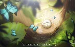 Картинка бабочки, природа, сова, спит
