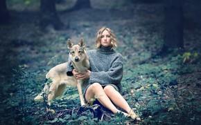 Картинка девушка, природа, собака