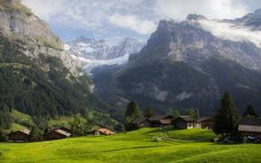 Картинка горы, Альпы, луг, домики, альпийская деревня